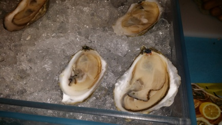 Oysters on the Half Shell